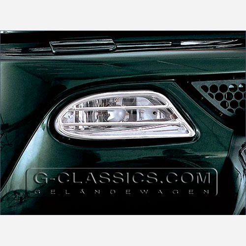 Nebelscheinwerferschutz - Fog Lamp Protection